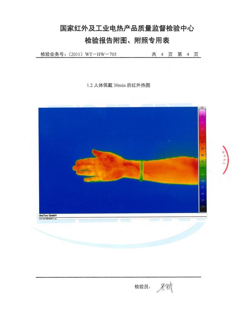 Noproblem Ion Balance Test Report (Pg 6/6)