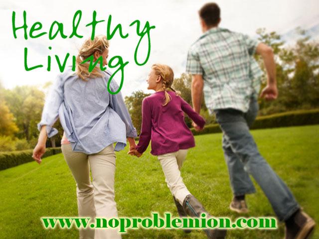 Healthy Living www.noproblemion.com